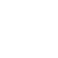 white InterNachi logo